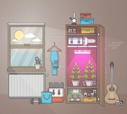 Hobby growroom