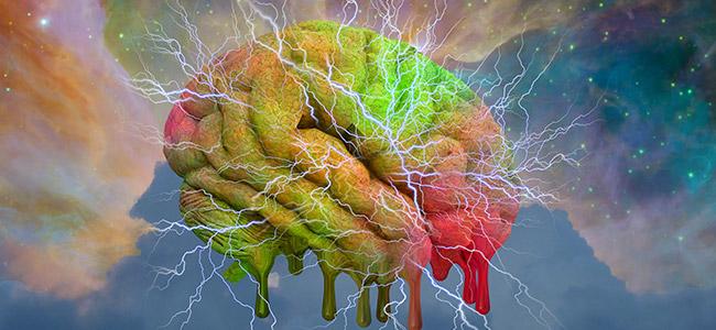 LSD y el cerebro