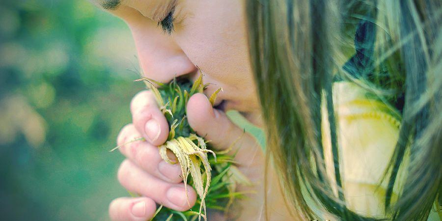 Razones Para Dejar El Tabaco: Sentido Del Gusto Y Del Olfato