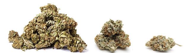 reducir el consumo de cannabis