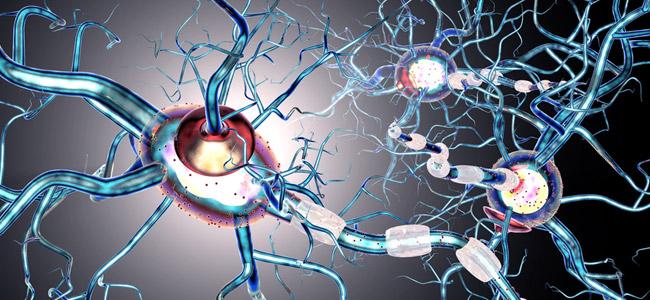 CBD y esclerosis múltiple