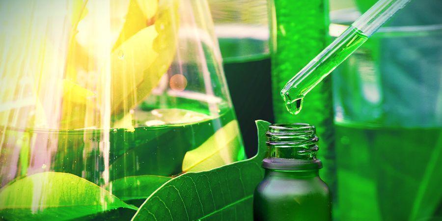 Química De La Ayahuasca