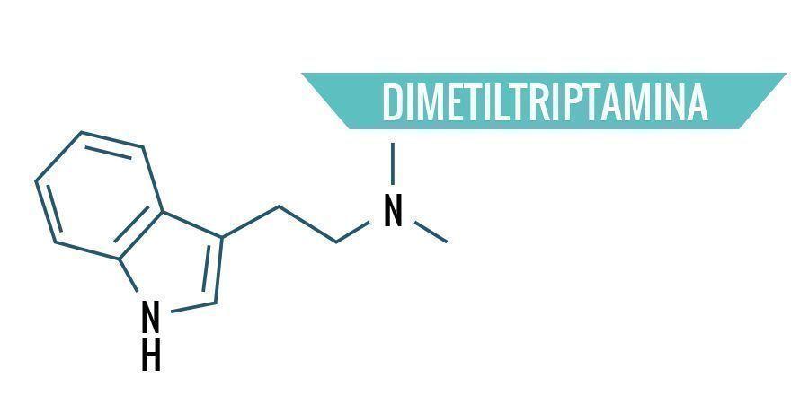 Dimetiltriptamina