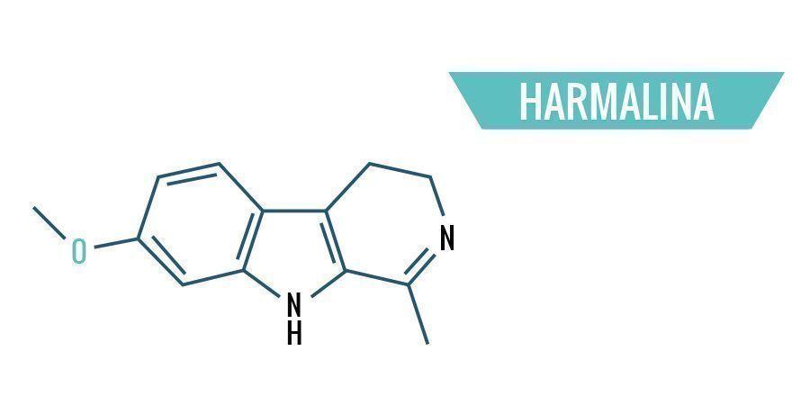 Harmalina
