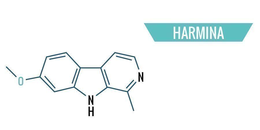 Harmina