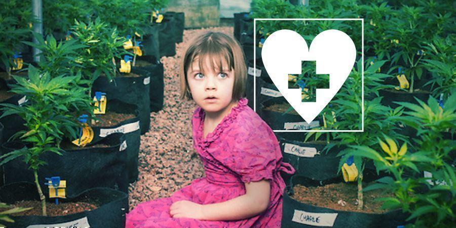 CBD y Epilepsia: La Historia de Charlotte