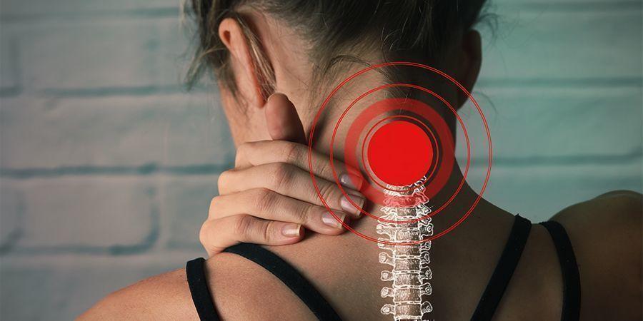 Catnip Alivio De Los Espasmos Musculares