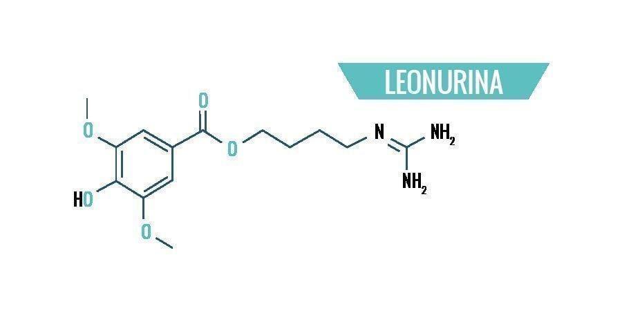 Química De La Leonotis Leonurus