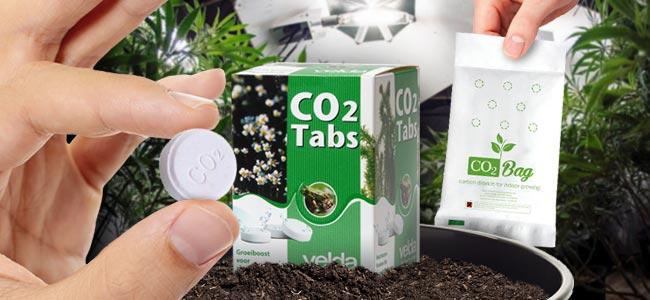 ¿Cómo Generar Cantidades Extra De CO₂?
