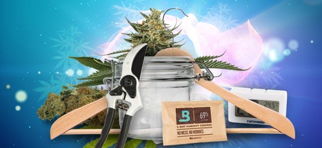 Cómo curar de forma correcta tu cannabis