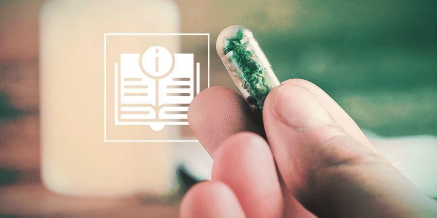 Guía Definitiva De La Microdosificación Con Psicodélicos Y Cannabis