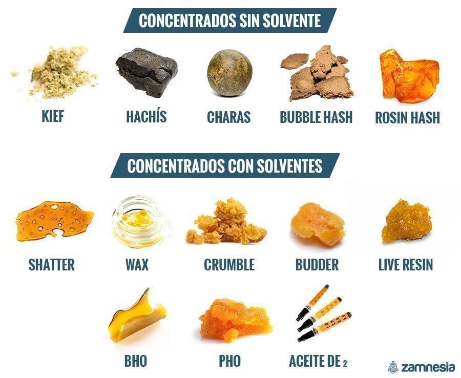 DIFERENTES TIPOS DE CONCENTRADOS: CON SOLVENTE O SIN SOLVENTE
