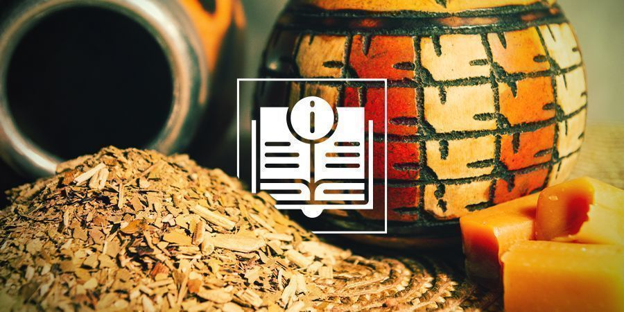 Yerba Mate: Una Infusión Antigua Repleta De Nutrientes