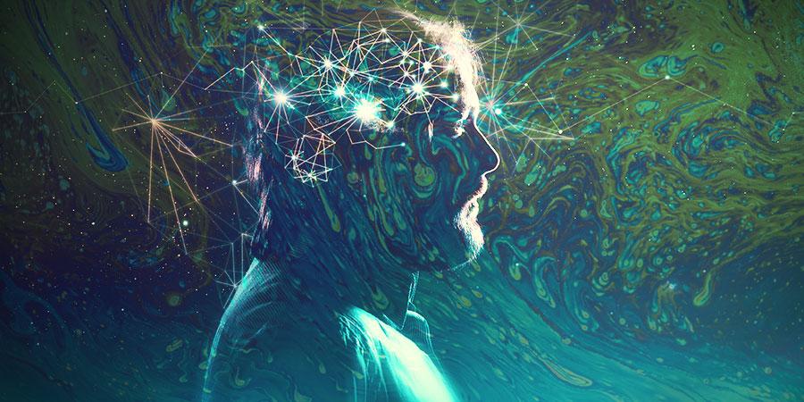Qué Le Sucede Exactamente Al Cerebro Bajo La Influencia De Psicodélicos