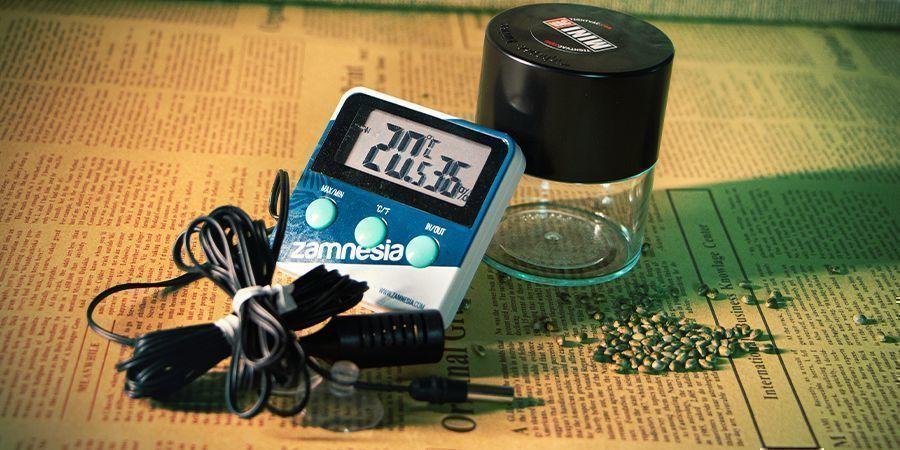 Factores A Considerar Al Almacenar Las Semillas De Cannabis