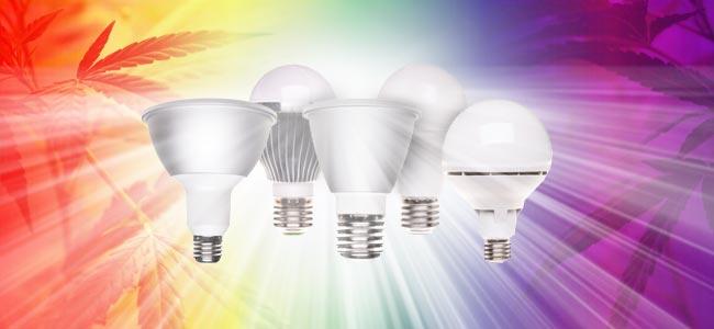 Diodos Emisores De Luz (LED)