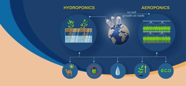 ¿Qué Son Y Aeroponico El Aero-hidropónico?
