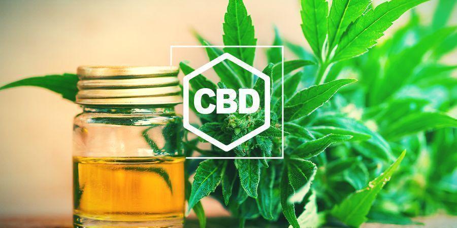 ¿Qué es CBD?