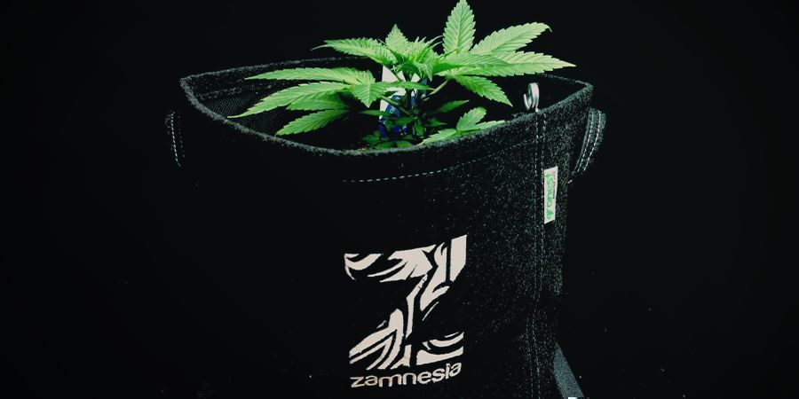 Macetas De Tela (Smart-Pots) Cannabis
