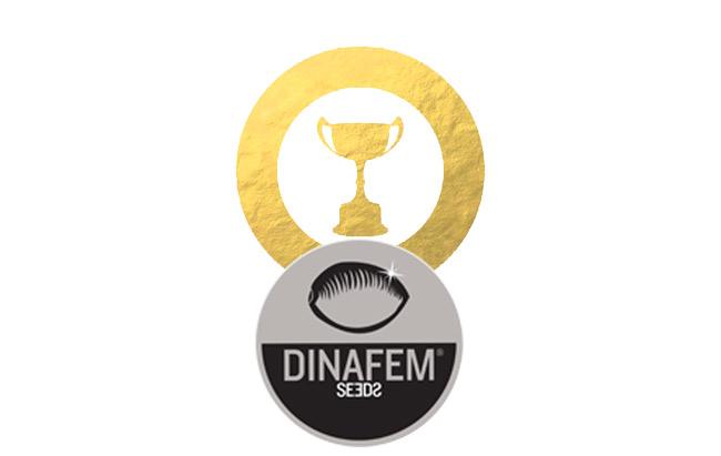 Premios de Dinafem