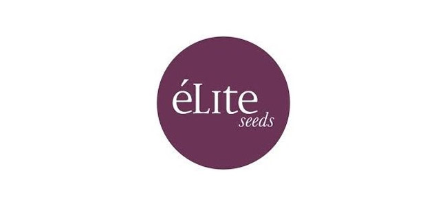 éLite Seeds Logo