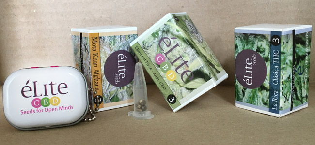 Élite Seeds Envases