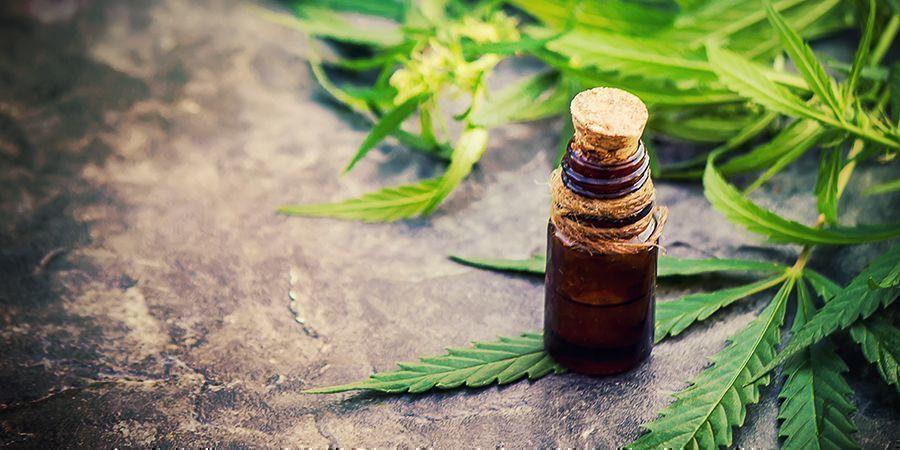 Haz Tus Propias Tinturas De Cannabis