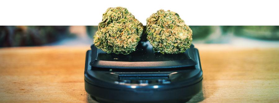 Básculas Para Marihuana