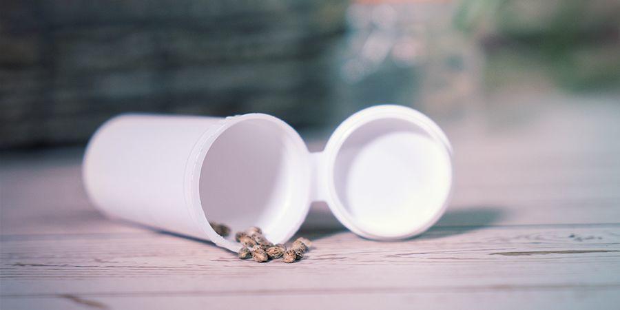 Almacenamiento De Semillas De Cannabis A Corto Plazo