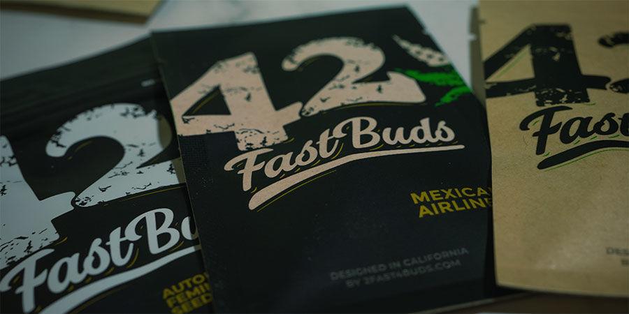 FastBuds: Expertos En Genética De Marihuana Autofloreciente