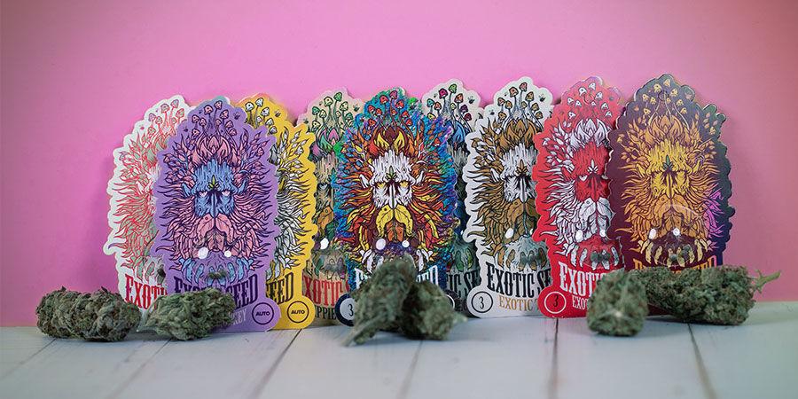 Variedades galardonadas Exotic Seed