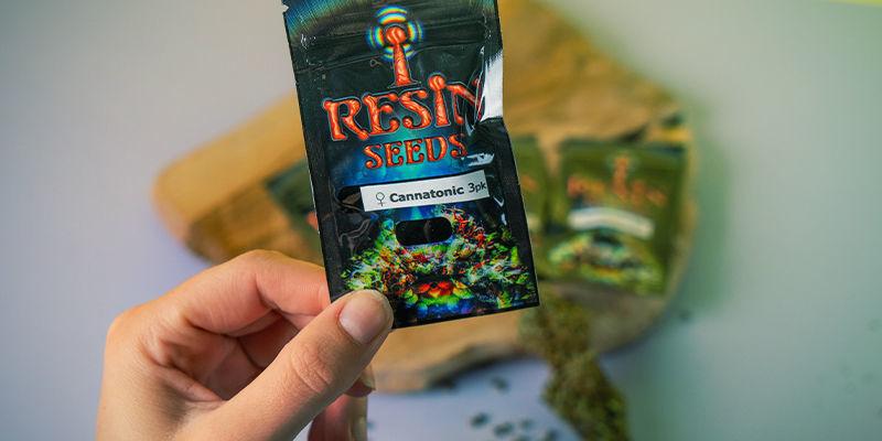 Resin Seeds: Fundadores Movimiento CBD