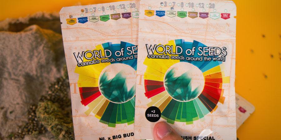 Cómo Envasa Sus Semillas World Of Seeds?