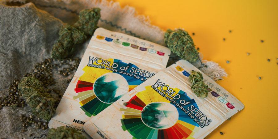 ¿Dónde Puedo Comprar Semillas De Marihuana World Of Seeds?