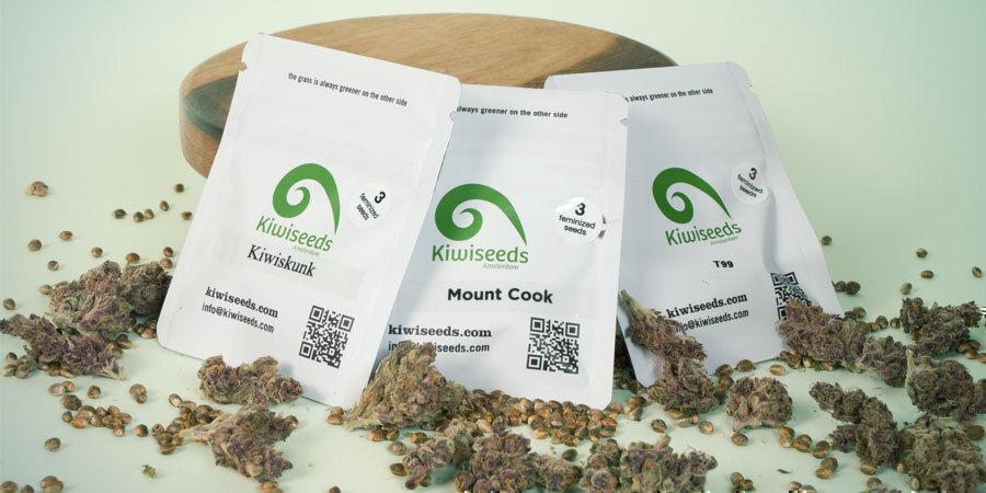 ¿Cuáles Son Las 3 Mejores Variedades De Marihuana De Kiwi Seeds?