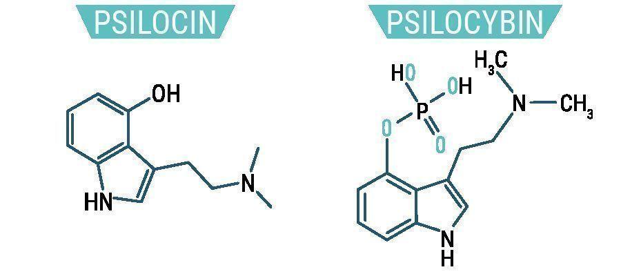 Psilocibina & Psilocina