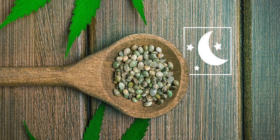 ¿Son lo mismo las semillas feminizadas que las fotoperiódicas?