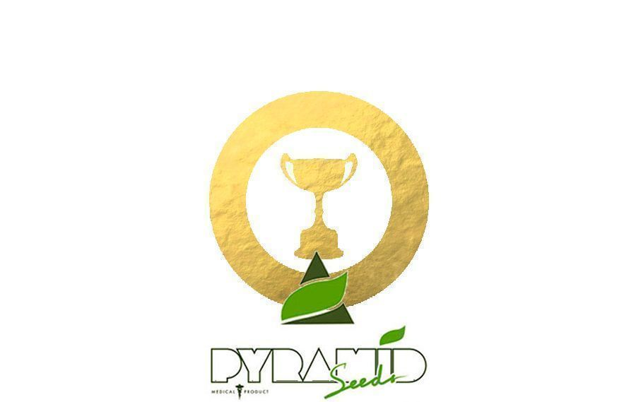 Premios Pyramid Seeds