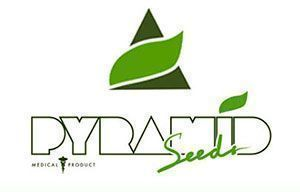 Pyramid Seeds Logo