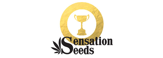 Palmarés Sensation Seeds