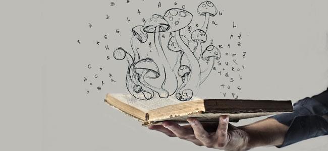 Origen del hongo mágico