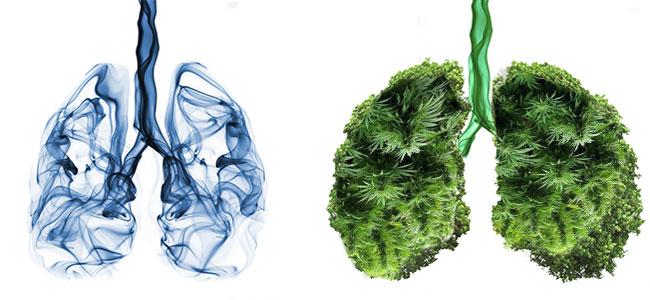 Pulmones de tabaco vs pulmones de vaporizador