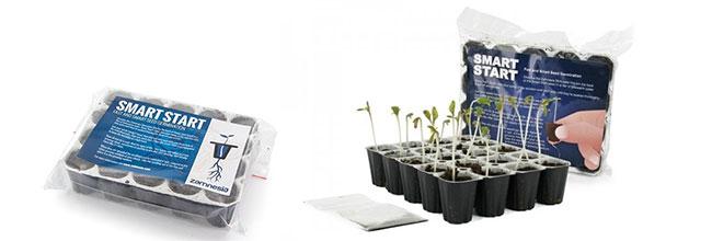 Smart start cultivar marihuana