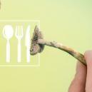 Los 5 Mejores Métodos De Consumo De Trufas Y Setas Mágicas