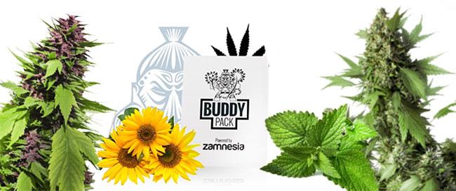 Ocultar el cultivo de cannabis
