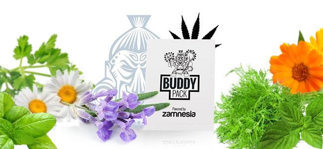 Los cannabis de compañía repelen insectos