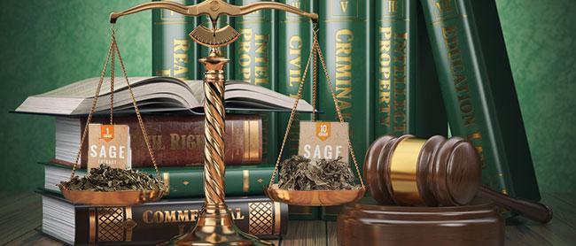 Legalidad de Salvia