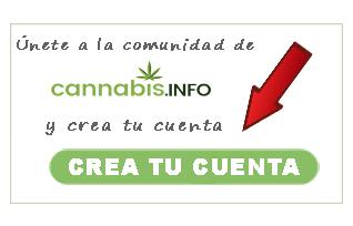 ¡Comparte tu informe de cultivo y gana semillas de marihuana!
