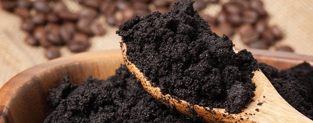 Recicla los posos de café y haz felices a tus plantas