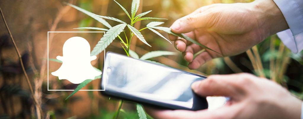 Snapchat Cannabis